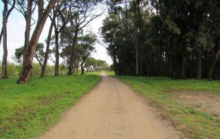 caminhada aldeias avieiras escaroupim caminhando-19