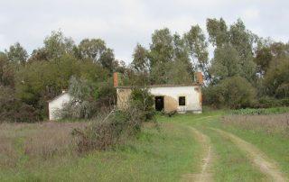 caminhada aldeias avieiras escaroupim caminhando-26