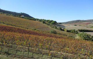 caminhada arruda dos vinhos sabugos moinho do ceu caminhando-7