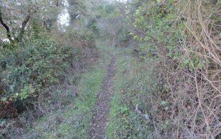 caminhada arruda dos vinhos sabugos moinho do ceu caminhando-4