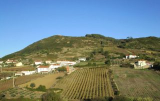 caminhada arruda dos vinhos sabugos moinho do ceu caminhando-15