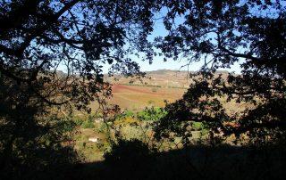 caminhada arruda dos vinhos sabugos moinho do ceu caminhando-12
