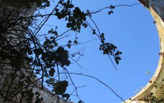 caminhada arruda dos vinhos sabugos moinho do ceu caminhando-11