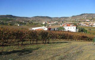 caminhada arruda dos vinhos sabugos moinho do ceu caminhando-9
