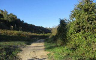 caminhada arruda dos vinhos sabugos moinho do ceu caminhando-8