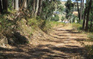 caminhada batalha vimeiro caminhando-5