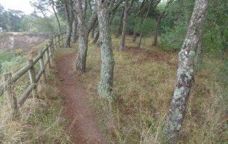 caminhada rota biodiversidade monsanto caminhando 10
