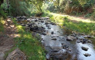 caminhada aldeia mata pequena cheleiros cascatas ancos caminhando-21