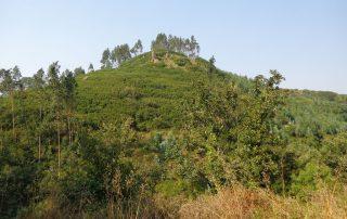 caminhada aldeia mata pequena cheleiros cascatas ancos caminhando-16