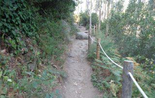 caminhada aldeia mata pequena cheleiros cascatas ancos caminhando-18