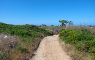 caminhada escarpas maceira vimeiro porto novo caminhando-9