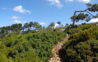 caminhada escarpas maceira vimeiro porto novo caminhando-16