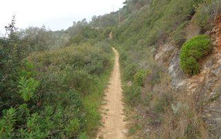 caminhada foz lizandro sao juliao caminhando-17