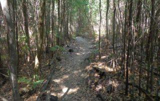 caminhada lagoas serra sintra lagoa azul rio da mula caminhando 11