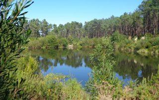 caminhada lagoas serra sintra lagoa azul rio da mula caminhando 18