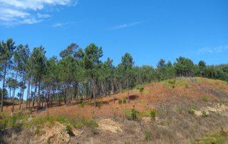 caminhada lagoas serra sintra lagoa azul rio da mula caminhando 8