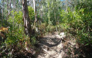 caminhada lagoas serra sintra lagoa azul rio da mula caminhando 9