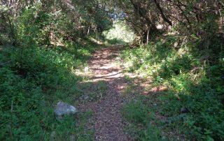 caminhada lagos ota alenquer montejunto caminhando-1
