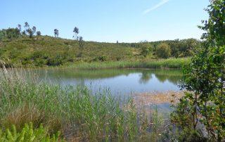 caminhada lagos ota alenquer montejunto caminhando-14