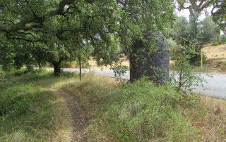 caminhada nascentes rio alviela caminhando-19