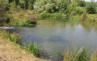 caminhada nascentes rio alviela caminhando-9