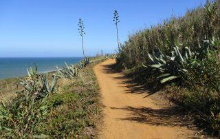 caminhada praias ericeira caminhando-12