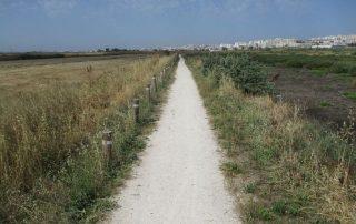 caminhada passadicos do tejo povoa vila framca de xira caminhando-15