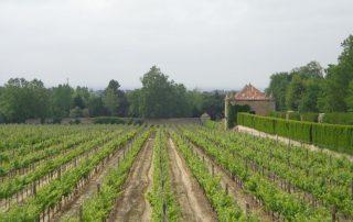 visita palacio bacalhoa vinhos azeitao caminhando-18