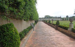 visita palacio bacalhoa vinhos azeitao caminhando-21