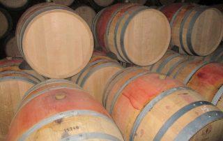 visita palacio bacalhoa vinhos azeitao caminhando-6