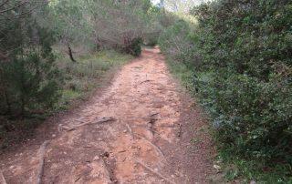 visita adega jose maria fonseca vila nogueira de azeitao caminhando-1