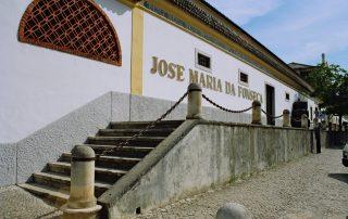 visita adega jose maria fonseca vila nogueira de azeitao caminhando-11