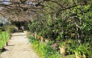 visita adega jose maria fonseca vila nogueira de azeitao caminhando-13