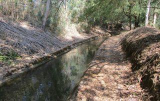 caminhada benavente leziria ribatejo arrozais canais sorraia caminhando-11