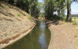 caminhada benavente leziria ribatejo arrozais canais sorraia caminhando-18