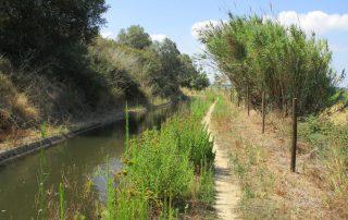 caminhada benavente leziria ribatejo arrozais canais sorraia caminhando-3