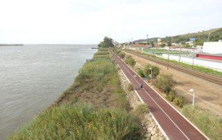 caminhada rio tejo alhandra vila franca de xira caminhando-15