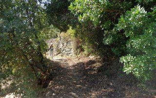 caminhada rio tejo alhandra vila franca de xira caminhando-17