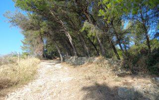 caminhada rio tejo alhandra vila franca de xira caminhando-2