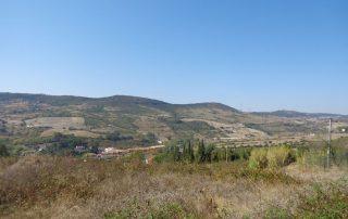 caminhada rio tejo alhandra vila franca de xira caminhando-26