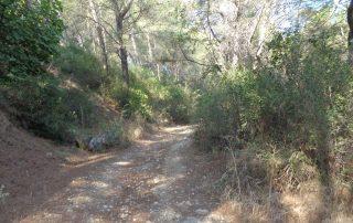 caminhada rio tejo alhandra vila franca de xira caminhando-9
