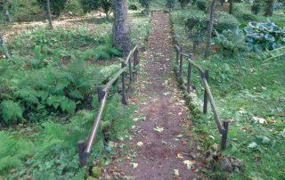 caminhada caminhar acores subida ao pico sao jorge graciosa caminhando-32