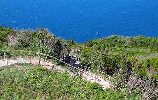 caminhada caminhar acores subida ao pico sao jorge graciosa caminhando-34