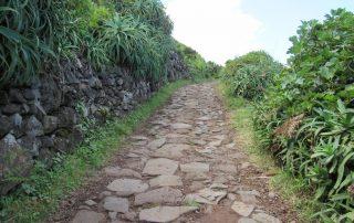 caminhada caminhar acores subida ao pico sao jorge graciosa caminhando-5