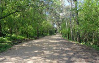caminhada corredor verde monsanto lisboa caminhando-1