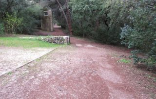 caminhada corredor verde monsanto lisboa caminhando-26