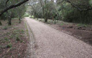caminhada corredor verde monsanto lisboa caminhando-4