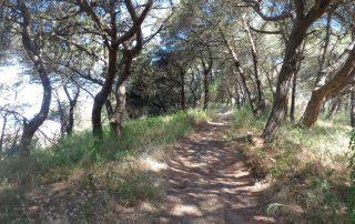 Caminhada Costa Da Caparica caminhando 10