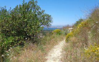 Caminhada Costa Da Caparica caminhando 9