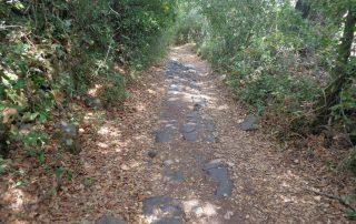 caminhada gruta olelas almargem do bispo gruta caminhando-16